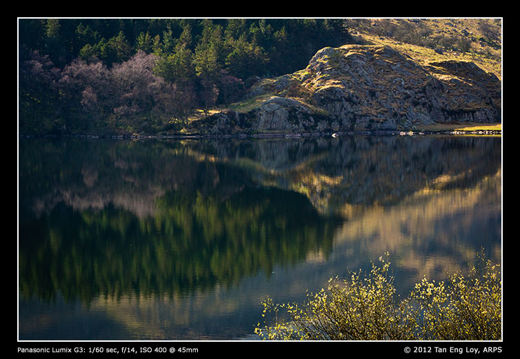 Reflections of Llynnau Mymbyr