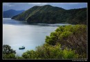 The View From Queen Charlotte Sound